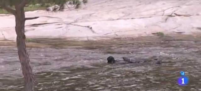 Ursula è morta in un fiume? - Una vita anticipazioni