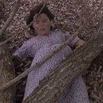Anticipazioni Il Segreto: MARCELA in pericolo, intanto Matias e Beatriz…